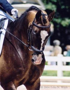 Gigar in 2004.