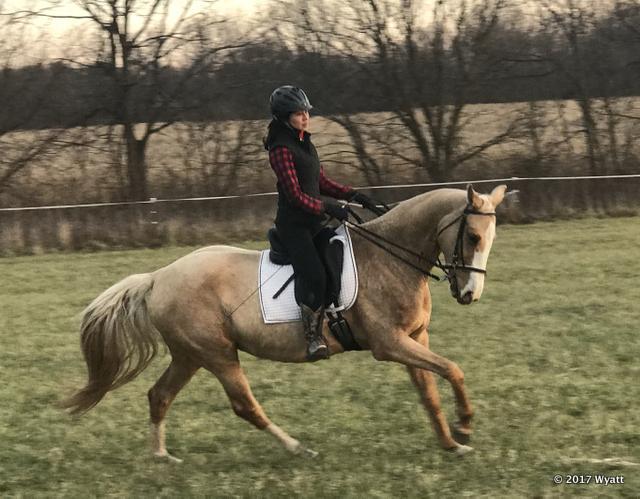 Riding2 12-2-17 - 2